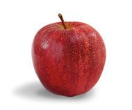 Apples - Royal Gala 1kg