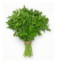 Parsley - Continental