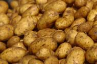 Potato - Brushed 5KG