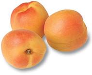 Apricots 1kg