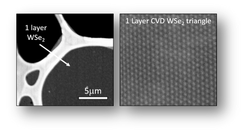 Transmission electron images (TEM) acquired from CVD grown WSe2 (triangular) monolayers on sapphire confirming highly crystalline nature of monolayers