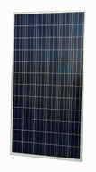 300W Polycrystalline Solar Panel  PSP-300A