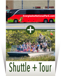 Everglades Airboat Tours + Transportation