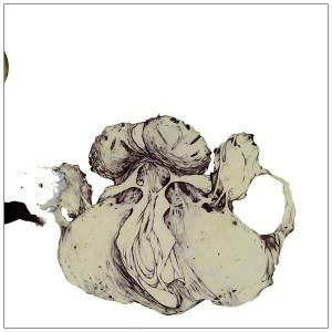 COIL: The Ape Of Naples 2LP