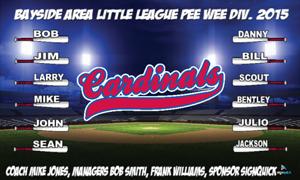 cardinals-feild-2.jpg