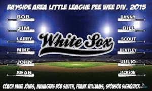 white-sox-feild-2.jpg