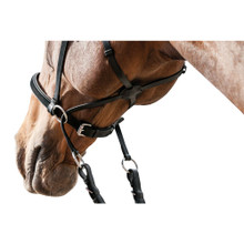 HF Bitless Bridle Detail