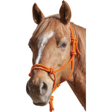 Rope Halter Orange