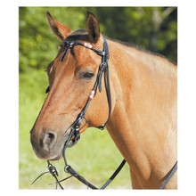 Western Bridle Blacky