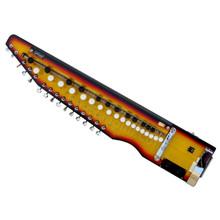 PALOMA Shahi Baaja - Sunburst Color - Electronic Banjo - (BR-BCH)