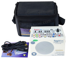 Raagini Electronic Tanpura By SOUND LABS - With Bag, Manual & Mains Cord - (BR-DG)