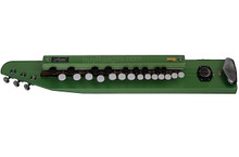 PALOMA Bulbul Tarang Green Color - Electronic Banjo/Benjo - (BR-DJH)