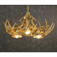 CHW10DL3 Whitetail 10 Antler Chandelier