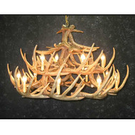 CHW24 Whitetail 24 Antler Chandelier