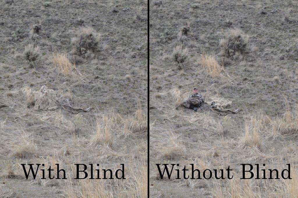QUICK BLIND W/ UNIVERSAL ATTACHEMENT