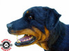 The Rottweiler dog attack rig is amazing and wonderfully detailed. The head moves naturally as does the jaw and front legs.