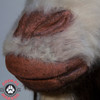 Goat mask mouth detail
