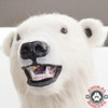 Polar Bear costume Head Shot