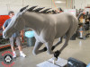 Wild Stampeding Mustang Horse Sculpture in Life Size