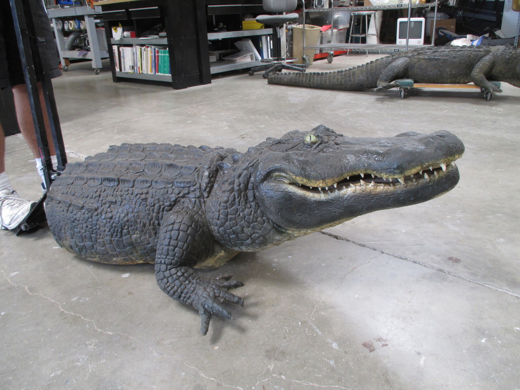 What a great looking alligator prop!