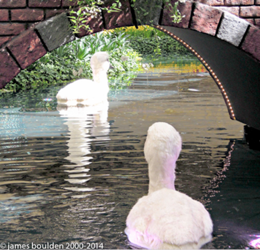 Oversized Swan Chick Lobby Display