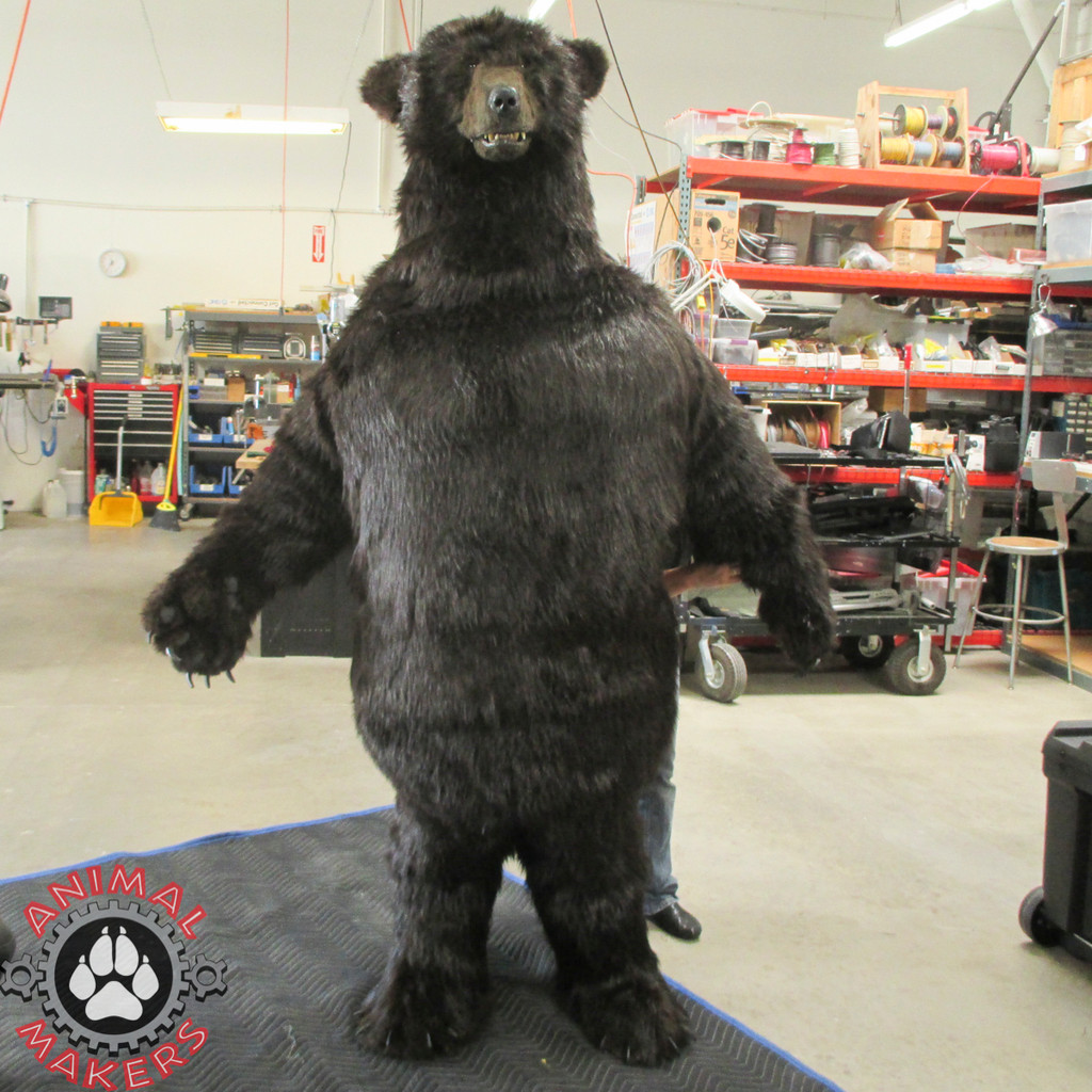Realistic, life-sized, bear costume