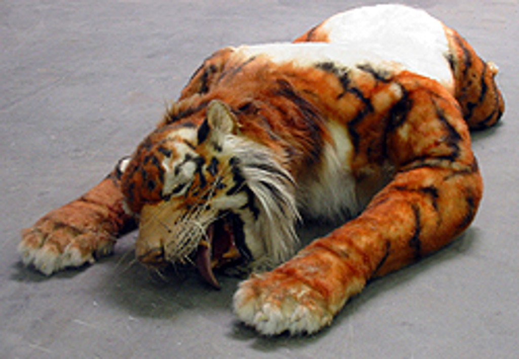 Laying tiger pattern