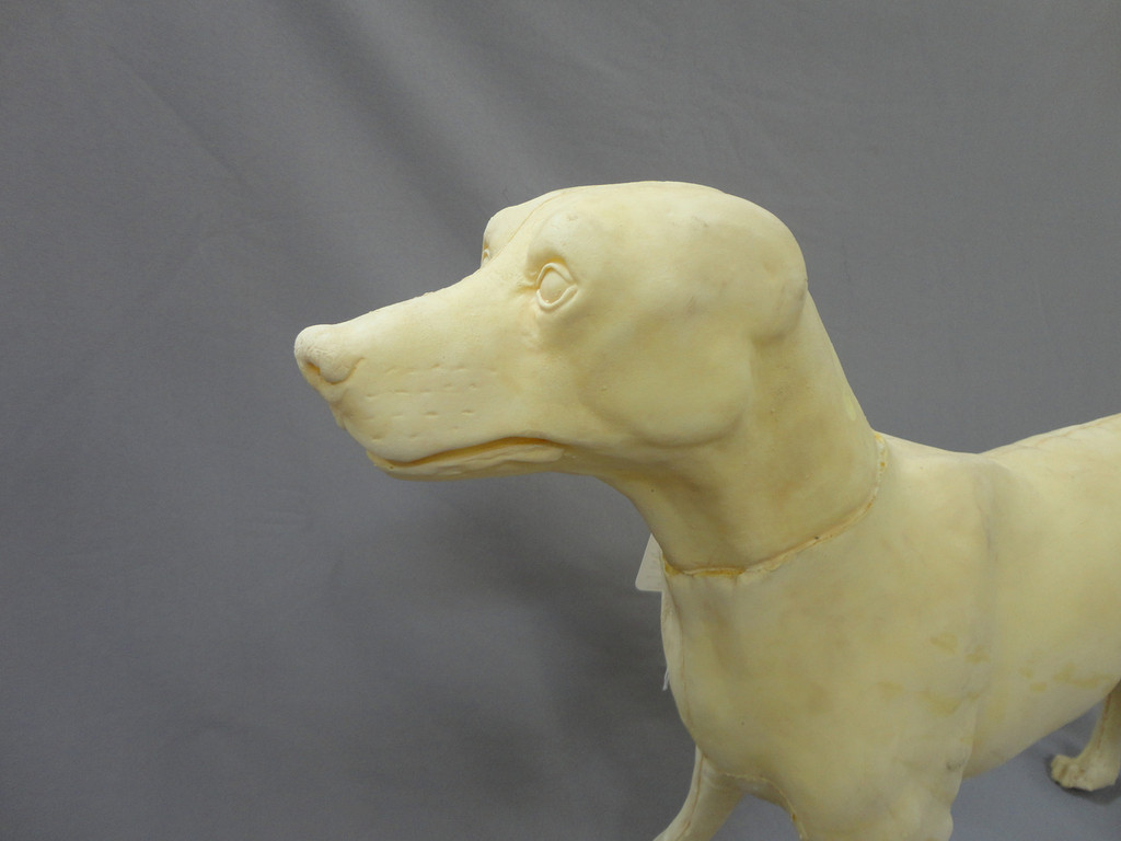 Realistic  Standing Dog Form