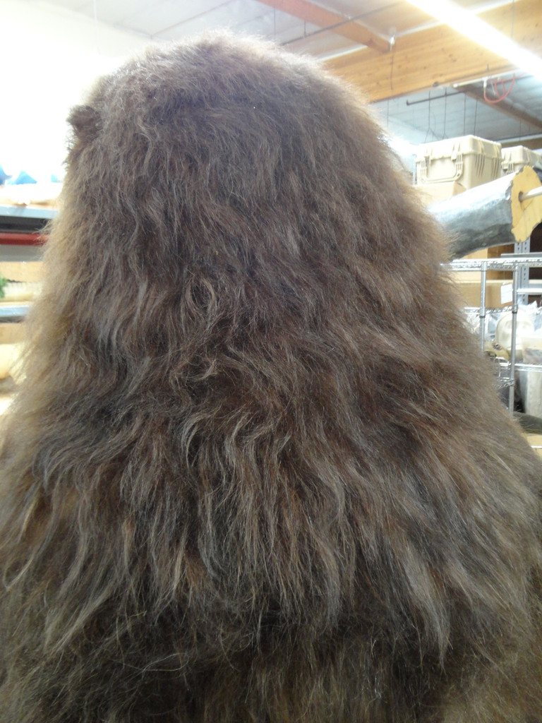 National Fiber Tech hair, Teddy, the realistic adult bear costume