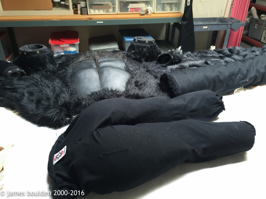 Grüd, the realistic adult gorilla costume laid out on a work table.