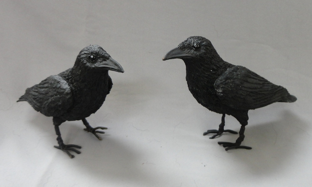 Crow Bird Prop : Crow prop bird replica animal makers sales rentals