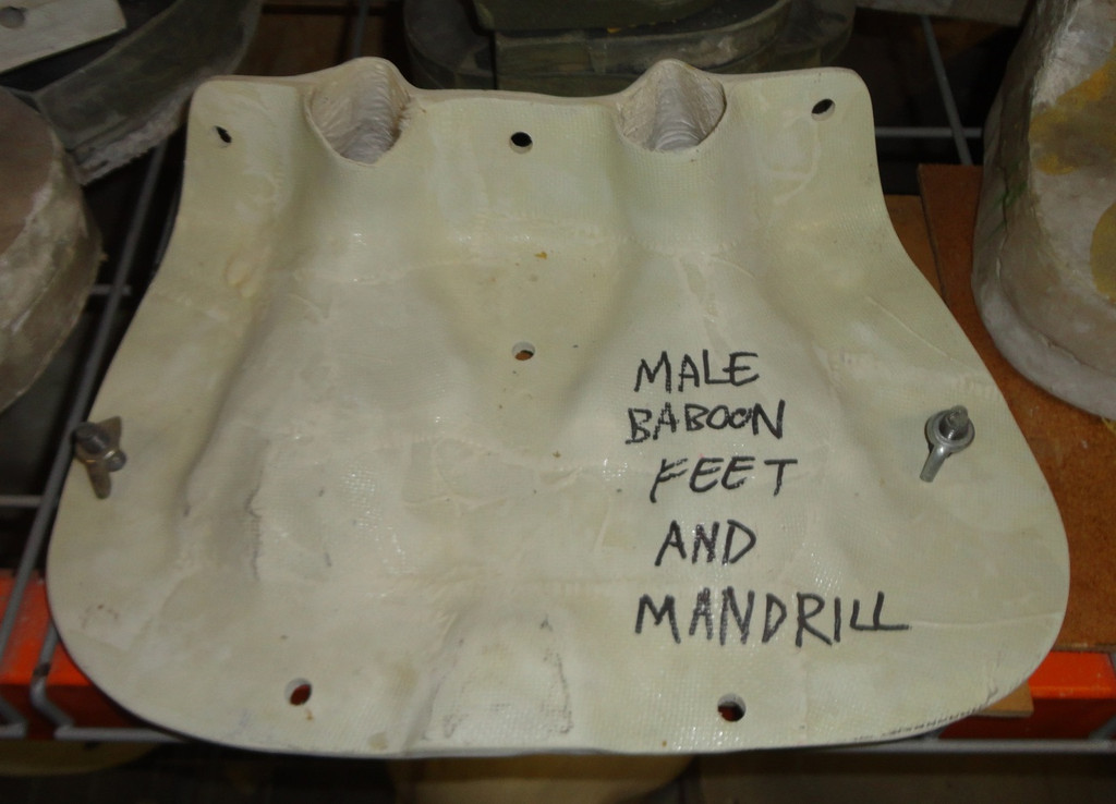 Baboon / Mandrill Feet Mold