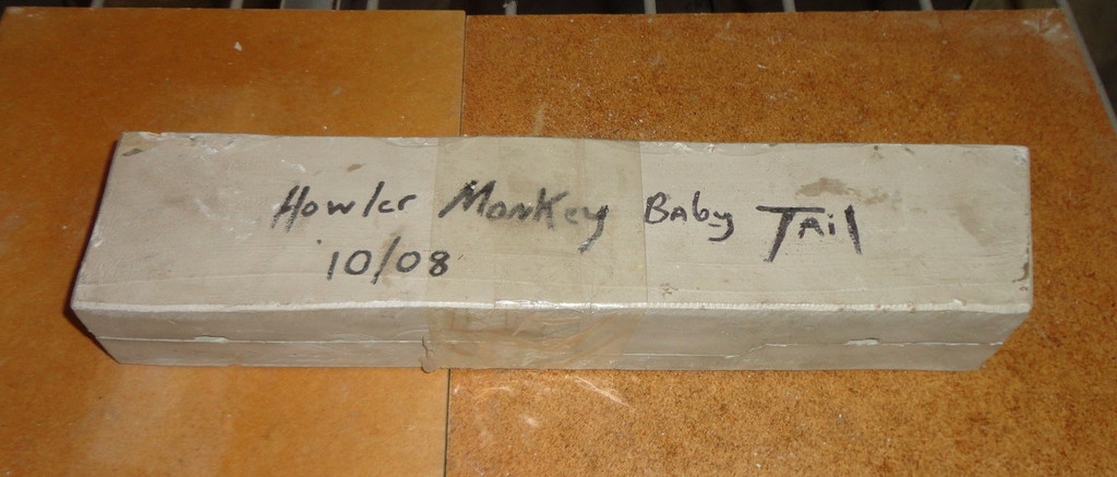Baby Howler Monkey Tail Mold