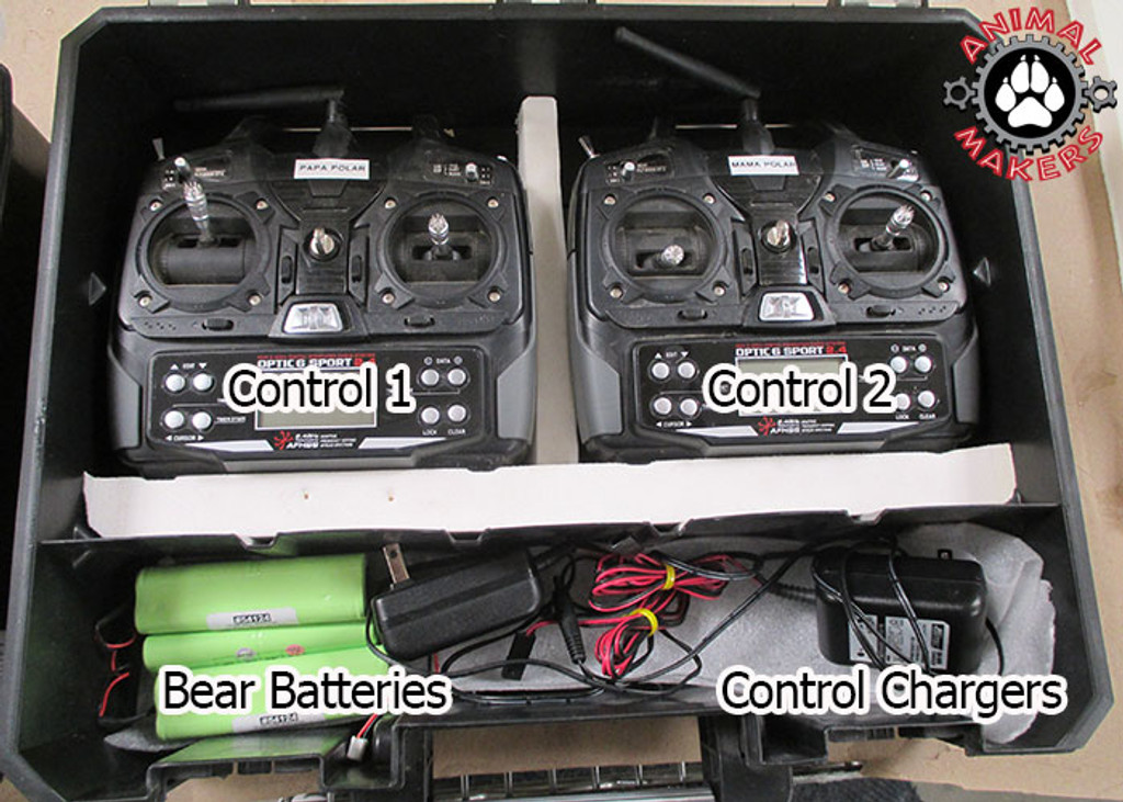 Radio control kit capable of controlling 8 servos