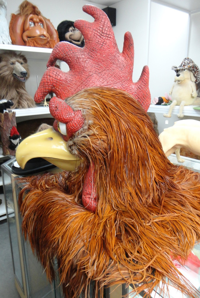 Adult rooster character head