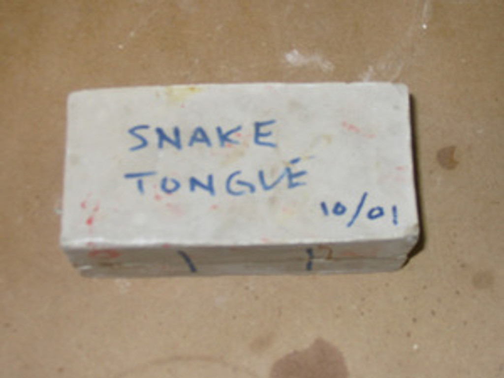 Snake Tongue Mold 10