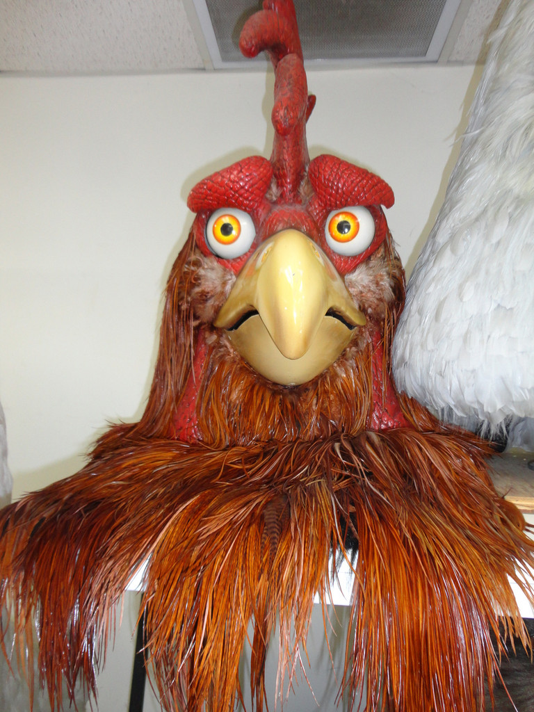 Adult Animated Rooster Character Costume at it's worst today