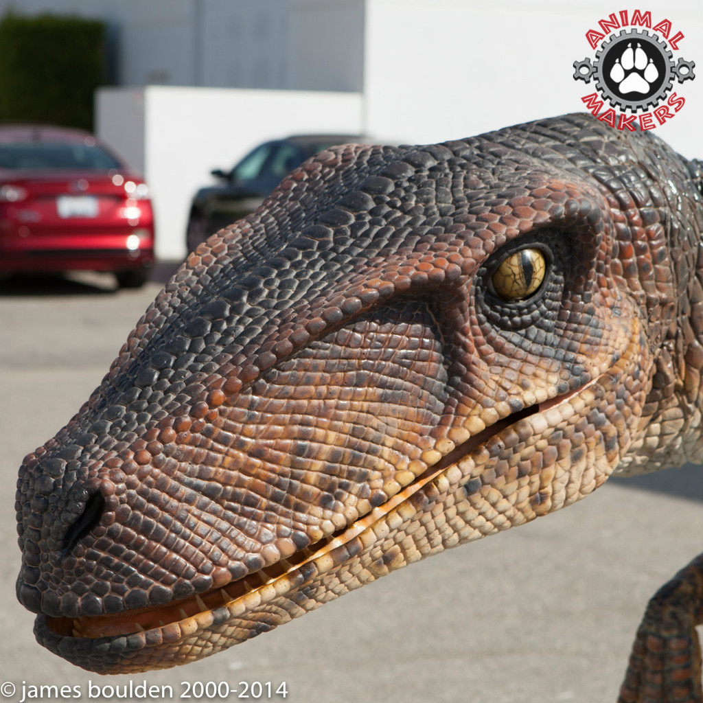 This artistic production package includes the key molds and patterns to create a large 12' long velociraptor costume.