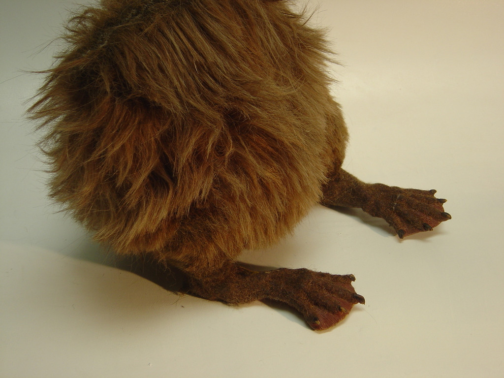 """The lower half of a beaver, to use for insert shots in commercials, tv shows, or features. The fur is hand-wefted and stretchy. The legs have dowels inside allowing a person to """"walk"""" the beaver."""