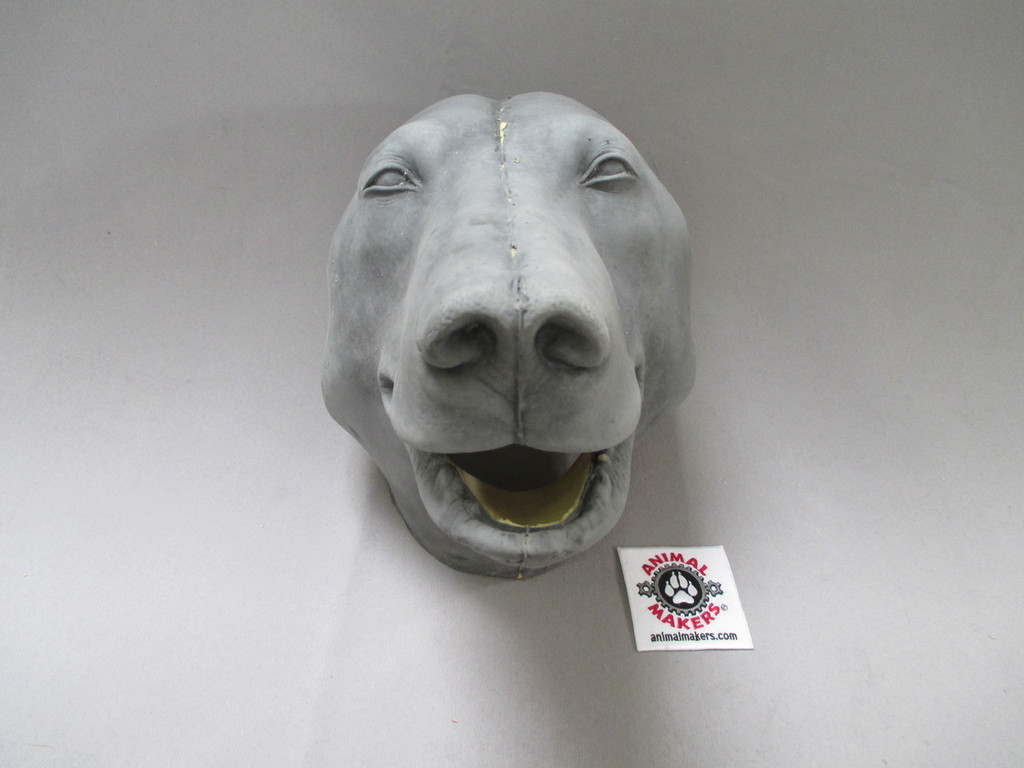 Bear mask front view- nose and mouth