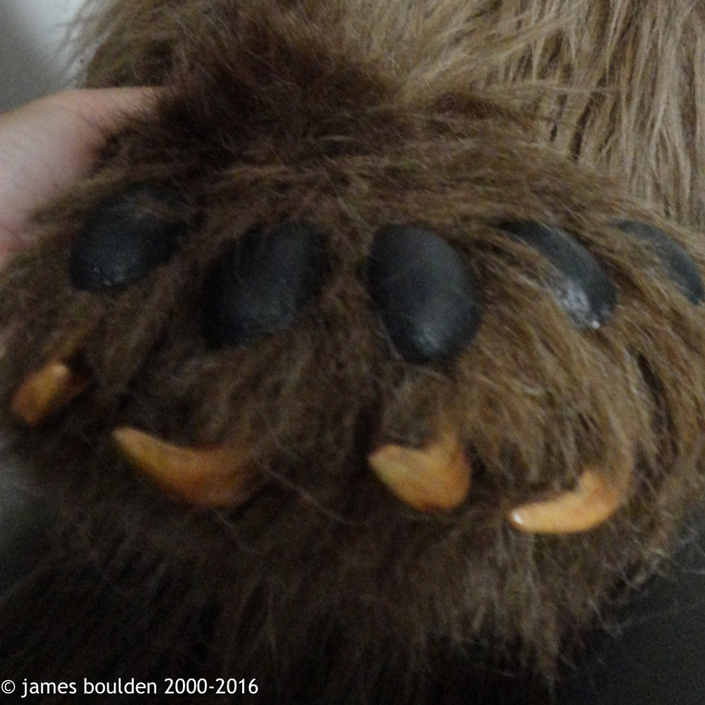 mama bear paw close up