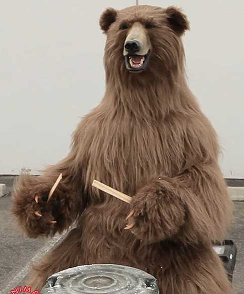 Bear can even play drums!