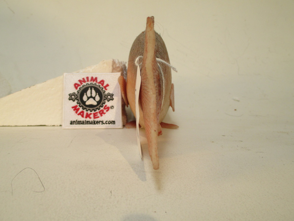 Red Fish Replica Prop
