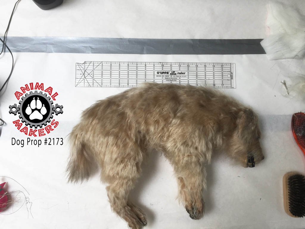 "The dog prop is approximately 18"" long, when measured along it's spine."