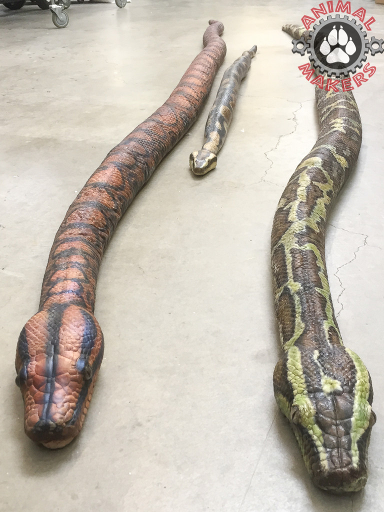 This head is the smaller of these three snake props