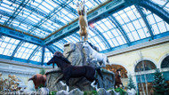 Awesome Horse Display Project Details