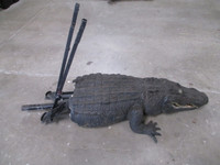 alligator snapper for film and television