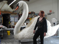 Oversized Swan Lobby Display