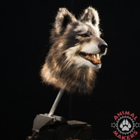 REalistic wolf or dog mask makes this amazing creature!