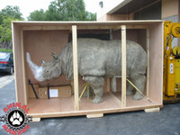 How to ship a rhino...